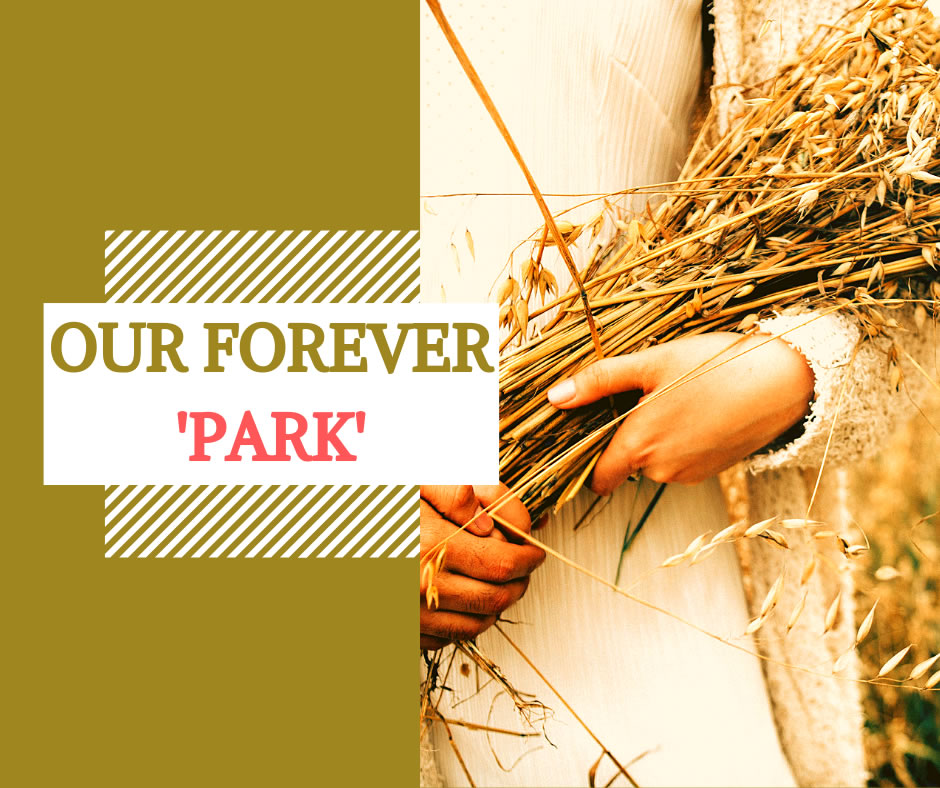Our forever residential Park Blog Banner