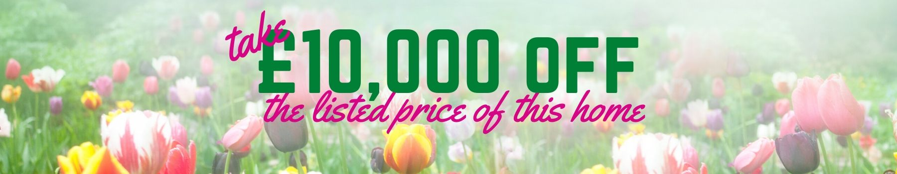 10000 off listed price of this home banner flowers